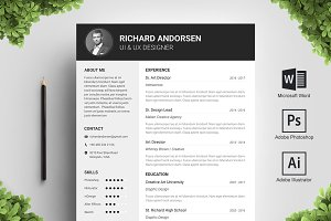 Block Resume Template