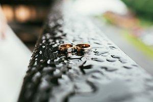 Beautiful golden wedding rings between drops
