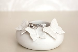 Beautiful silver wedding rings on tender porcelain figure