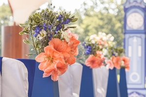 Beautiful bouquets of hippeastrums and petals on blue pedestals
