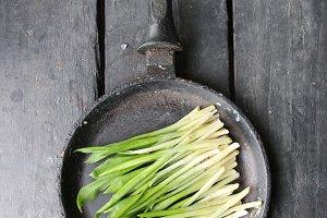 Diet, vegetarian, vegan food, vitamin snack. Ramson or wild garlic