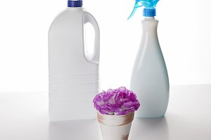 The bottles with cleaning chemistry and pot with a pink flower.