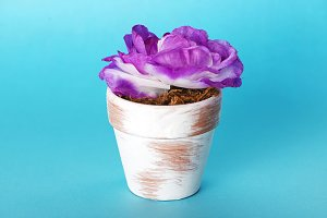 Flowerpot with a flower to decorate on a blue background.