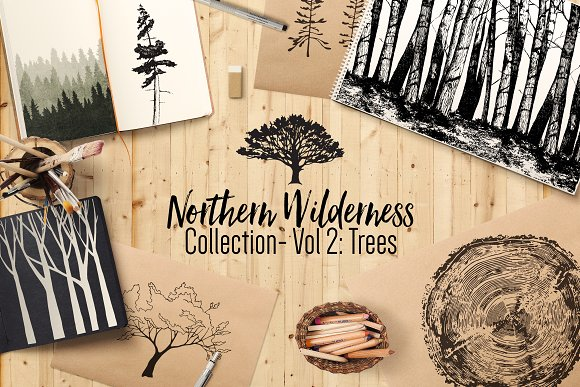 Northern Wilderness Collection Tree