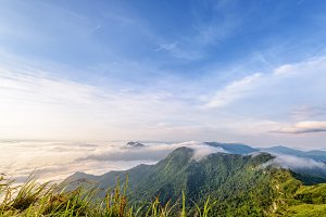 Morning in Phu Chi Fa Forest Park