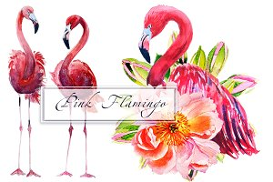 Watercolor Flamingo Set