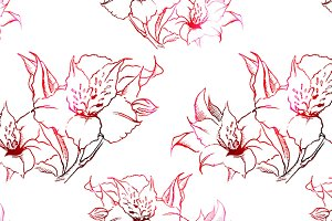 Alstroemeria seamless pattern vector