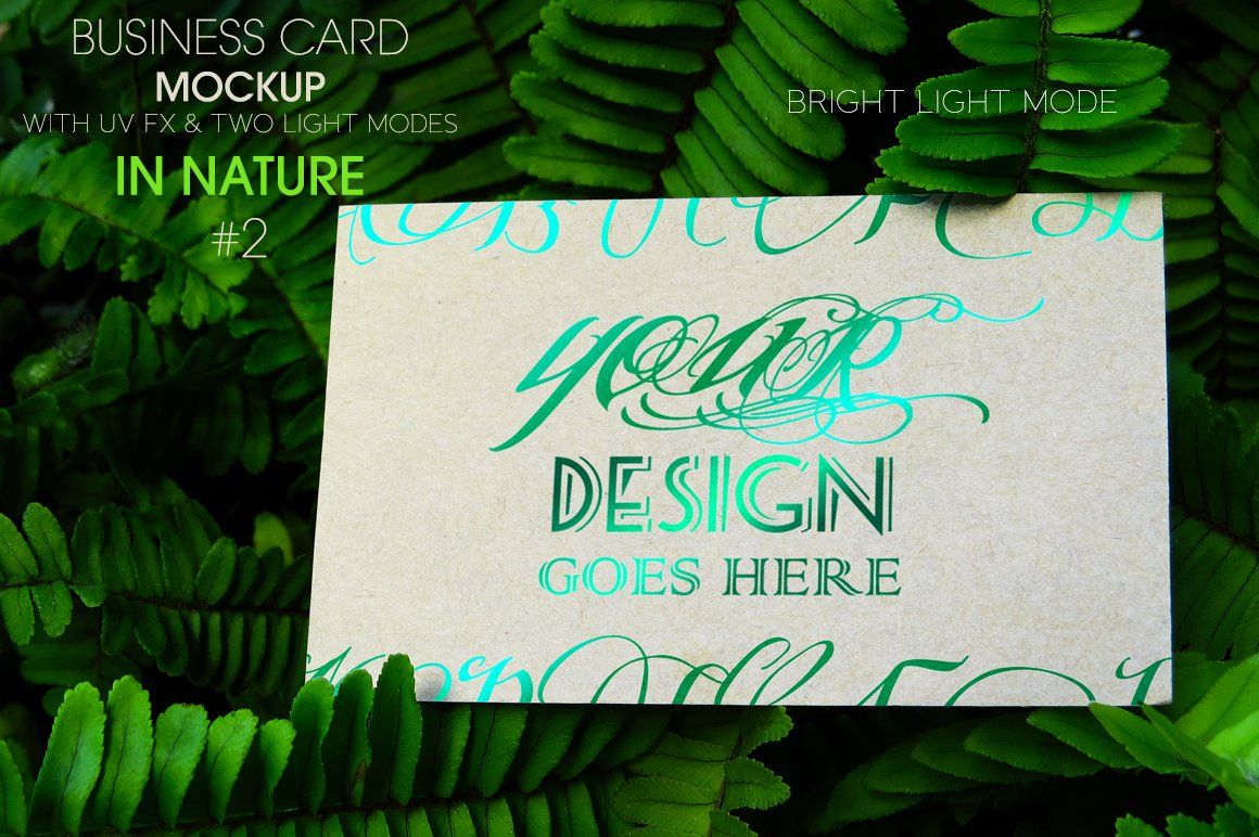 Business Card In Nature 2 MockUp ~ Product Mockups ~ Creative Market