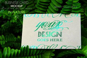 Business Card In Nature 2 MockUp
