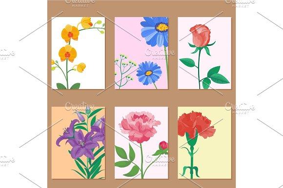 Cartoon Petal Vintage Floral Vector Bouquet Garden Flower Botanical Natural Peonies Illustration And Summer Floral Greeting Card Spring Blossom