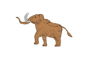 Woolly Mammoth Prancing Drawing