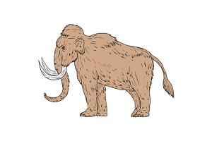 Woolly Mammoth Side Drawing