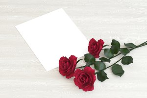 Blank card with flowers roses