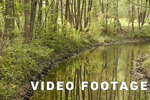 Bend in the river. Autumn daytime. Smooth dolly shot