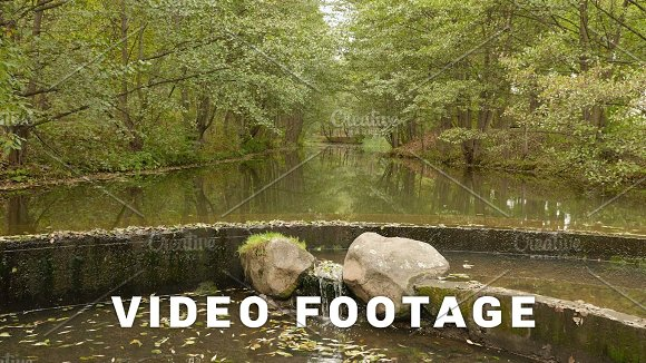 Backwater In The River Autumn Daytime Smooth Dolly Shot