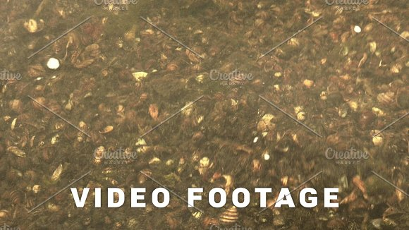 Close Up To The Water Of The River Autumn Daytime Smooth Dolly Shot