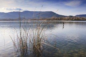 Lake of Banyoles, Girona, Spain