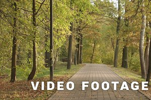 Walkway in the park. Autumn daytime. Smooth dolly shot