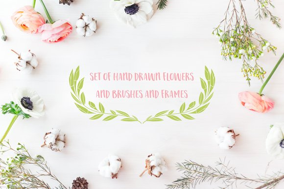 Set Of Hand Drawn Flowers Brushes