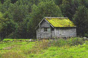 Grass house in north Norway
