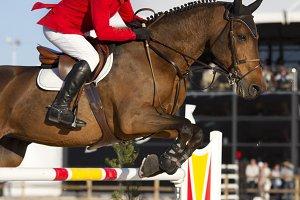 Rider and horse jumping
