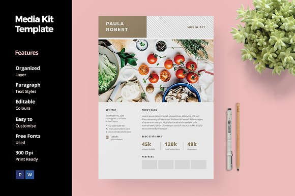 Media Kit For Blogger Social Media Templates Creative Market