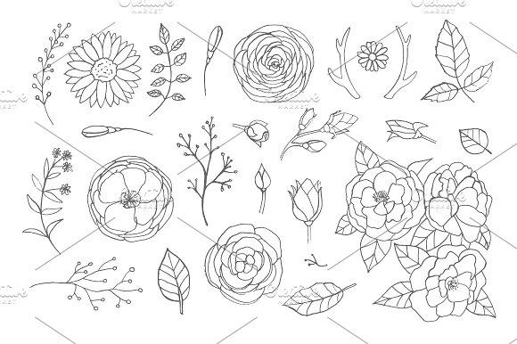 Hand Drawn Floral Set