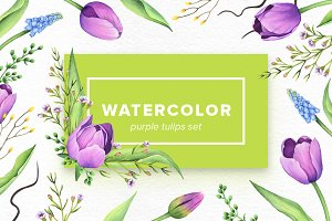 Watercolor Purple Tulips Set