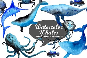 Watercolor whales & other creatures