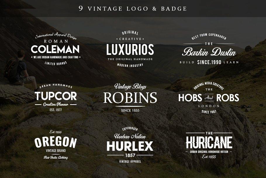 Antartic 15 Logo & Badge