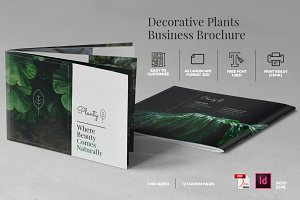 A5 Decorative Plants Brochure