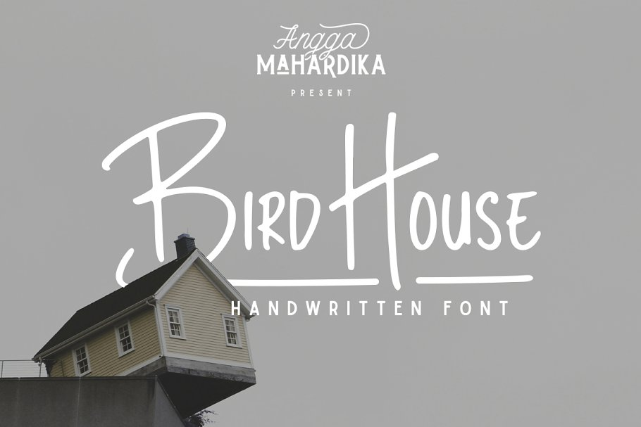 Miraculous Bird House Sans Serif Fonts Creative Market Home Interior And Landscaping Ferensignezvosmurscom