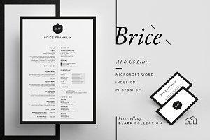 Resume/CV - Brice