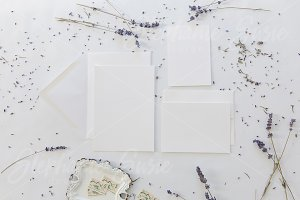 White and Lavender Invitation Mock