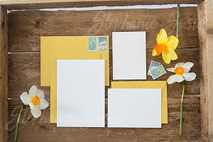 Yellow Invitation Lay Flat Mock Up
