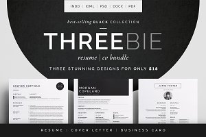 Resume/CV - Threebie Bundle 1
