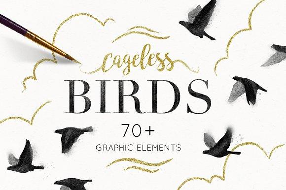 Cageless Birds 20% Off