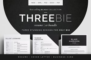 Resume/CV - Threebie Bundle 2