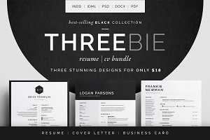 Resume/CV - Threebie Bundle 3