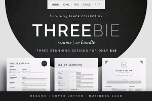 Resume/CV - Threebie Bundle 4