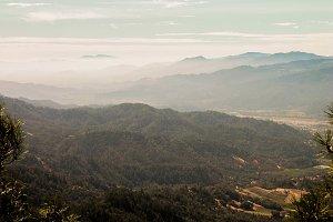 Napa Valley Mist