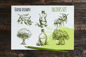 Olives hand drawn vector sketches