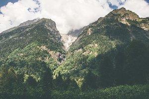Forest Mountains Landscape
