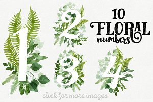 10 Watercolor Floral Numbers