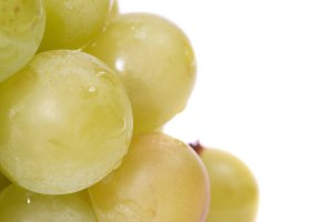 White grapes with water drops