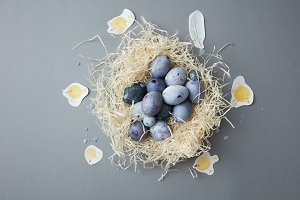 painted Easter eggs in a nest