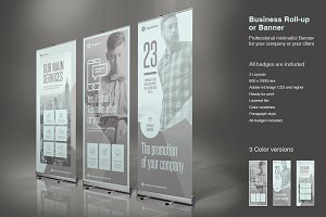 Business Roll-Up Vol. 7