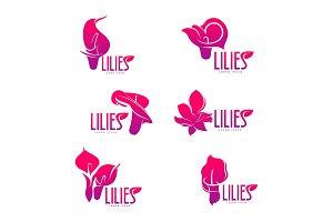 Elegant lilies logo template