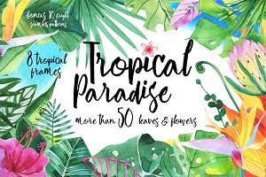 Tropical Paradise watercolor set