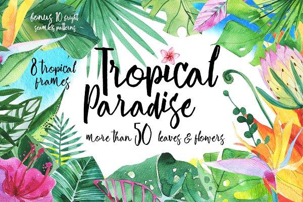 Tropical Paradise watercolor set